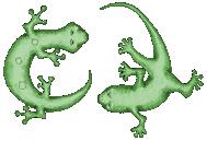 2Geckos Logo